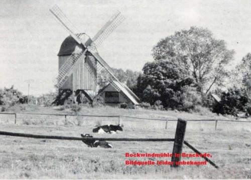Die Bockwindmühle in Brackede