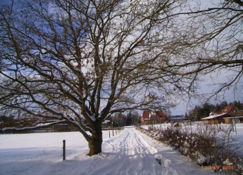 Winter 2006