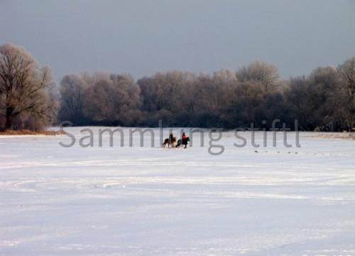 Ausreiten im Winter 2010