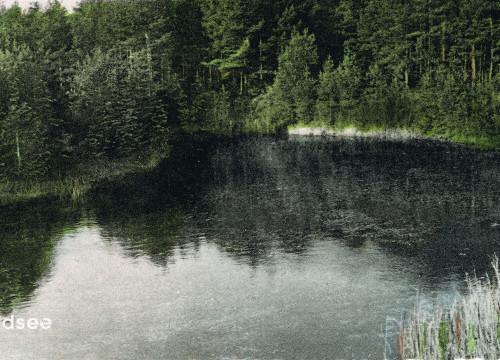 Waldsee
