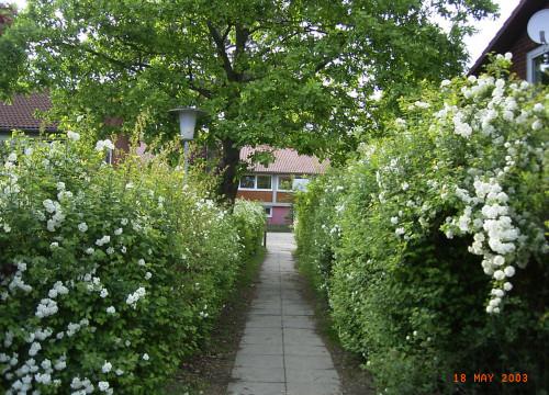 Kinderdorf Alt-Garge - Blick zum Dorfplatz