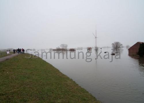 Blick vom Deich - Hochwasser 2011
