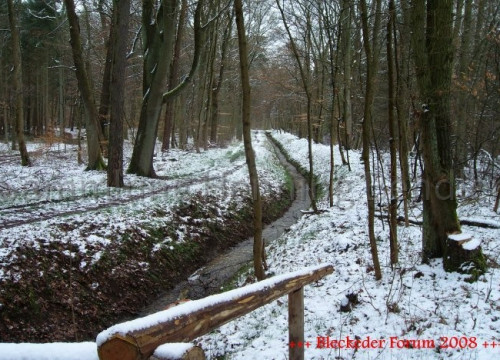 Plötzlicher Wintereinbruch im März 2008