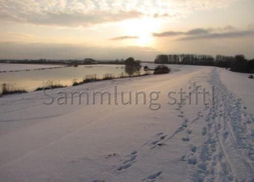Elbdeich im Winter 2010