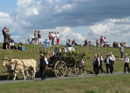 800 Jahre Umzug - Schützenweg