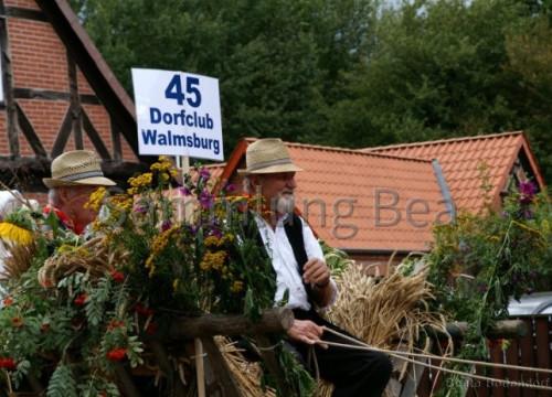 800 Jahre Umzug - Dorfclub Walmsburg