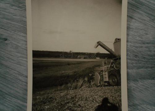 Getreideernte am Logsberg auf dem ehemaligen Feld von H.Kröpke aus Göddingen.