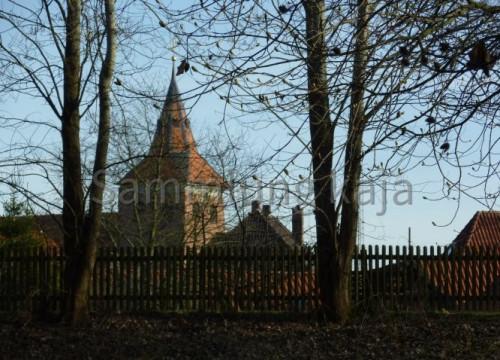 Blick vom Park zur Kirche