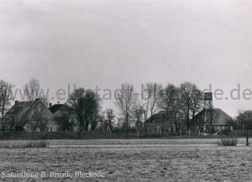 Elbblick 1968