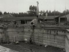 Waldbad - Bau Sprungturm und Becken 1964