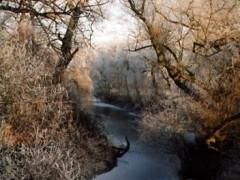 Wallgraben im Winter 1998