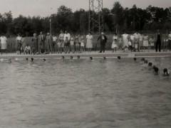 Waldbad 1964 - Schwimmerbecken